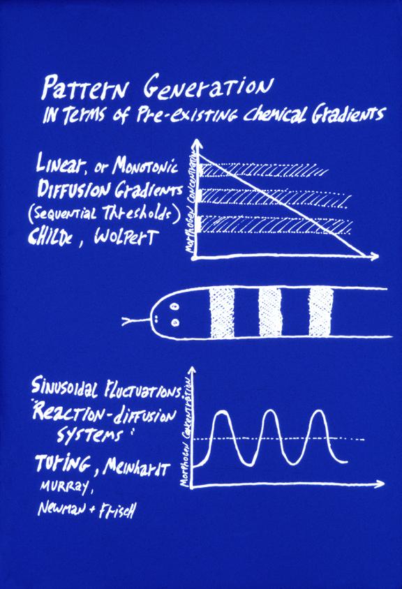 pdf Understanding Mass Higer